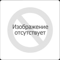 """Кубок Открытия у """"Гладиуса""""."""
